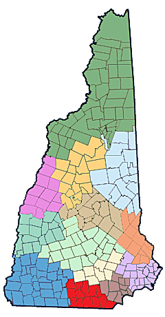 NH Public Health Networks - South Central Regional Public Health Network